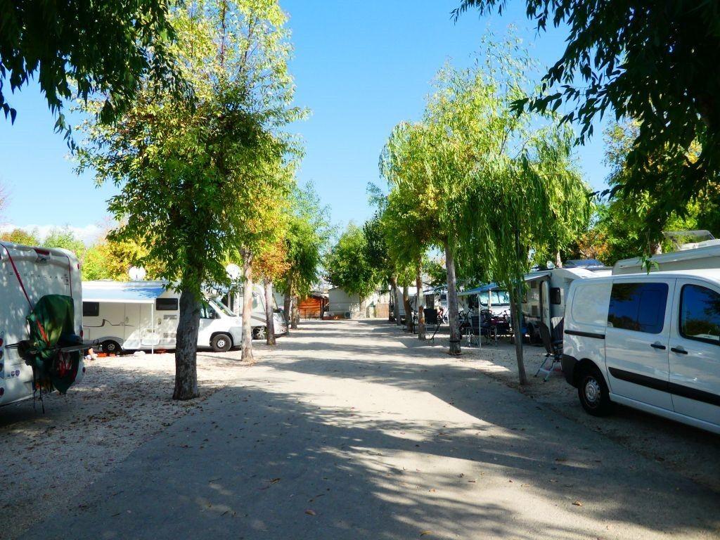 Camping El Naranjal